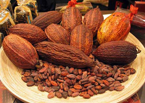 Cocoa farmers deserve a bigger share of the pie
